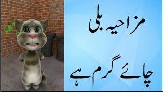 Talking Tom Funny | Funny jokes  | in Urdu Hindi