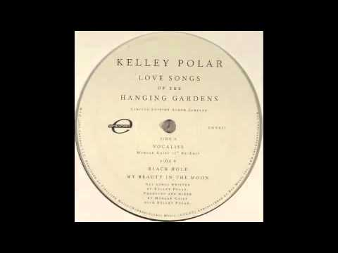 Kelley Polar - Black Hole [Environ, 2005] mp3