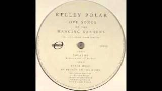 Kelley Polar - Black Hole [Environ, 2005]