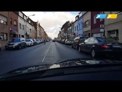 Hier rennt ein Zebra durch Düren (Aachener Zeitung/Aachener Nachrichten)