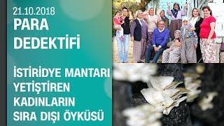 İstiridye mantarı yetiştiren kadınların sıra dışı öyküsü - Para Dedektifi 21.10.2018 Pazar