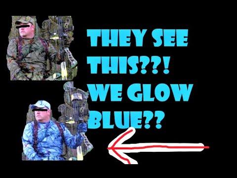 UV Deer Vision? Do You GLOW To Deer?!