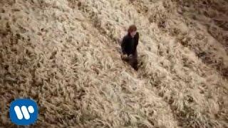 Ligabue - Il mio pensiero (Official Video)