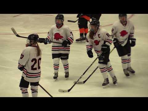 Devils Lake Girls Hockey vs. Williston 12-2-17