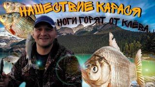 НАШЕСТВИЕ КАРАСЯ рыбалка в Ульяновске Каргино ч 3 мощные поклевки закрытие сезона