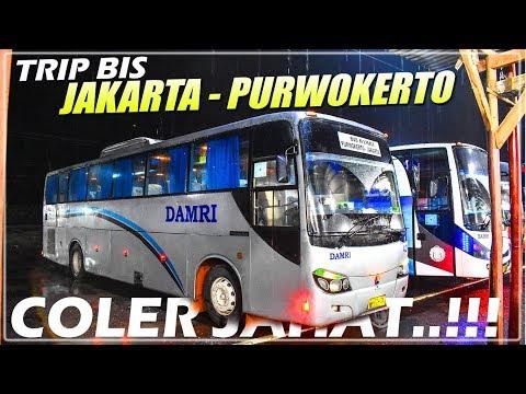 Naik Bis Legend Ke Kota NGAPAK    Trip Bis DAMRI Jakarta - Purwokerto (MB 1521)