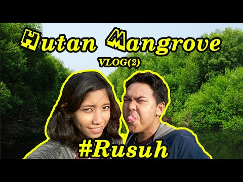 VLOG(2) Hutan Mangrove PIK Jakarta #RUSUH
