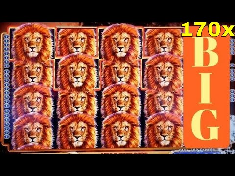 KING OF AFRICA Slot Machine ★SUPER BIG WIN★ 170x Line Hit & BONUS Win w/RETRIGGER ! Live Slot Play