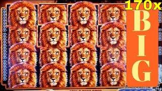 Игровой Автомат KING OF AFRICA SUPER BIG WIN 170x Line Hit & БОНУС Win/RETRIGGER! Live Slot Play | Найти Игровые Автоматы Вулкан