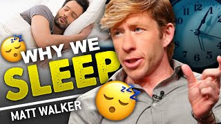 MATTHEW WALKER - WHY WE SLEEP | How To Sleep Better & Improve Your Life | London Real