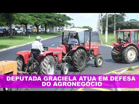 Deputada Estadual Delegada Graciela atua em defesa do Agronegócio.