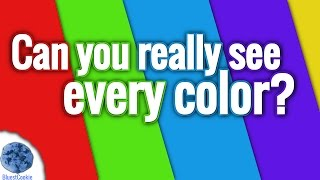 Are You Colorblind? (Color Test)