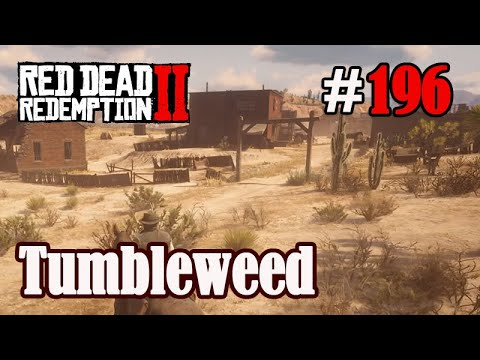 let's-play-red-dead-redemption-2-#196:-tumbleweed-[frei]-(slow-,-long--&-roleplay)