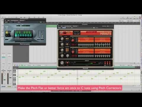 Sonic Charge - Permut8 - B Roy Pitch Play Bank:freedownloadl.com  sonic charge synplant free dow, synthesizer, job, market, plant, window, synthes, sonic, softwar, patch, knob, music, seed, genet, free, world, download
