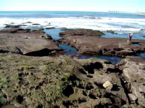 Ocean Beach Tidal Pools At Low Tide Youtube