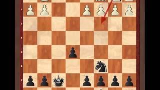 Защита 2-ух коней. 2 часть (для 2-3 разряда)
