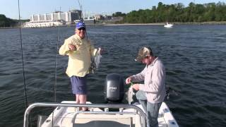 Final Step Outdoors- Maryland Striper Fishing 2014