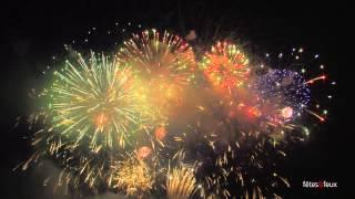 Paris 2013 Feu d'artifice - bouquet final - Tour Eiffel Quatorze Juillet Fireworks - 14 July