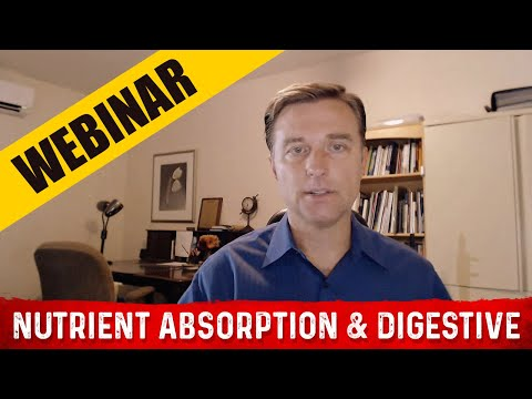 Nutrient Absorption & Digestive Webinar