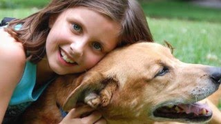 24 Hour Emergency Vet Austin TX - Veterinarian Pet Care
