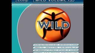 WILD FM VOLUME 15 - WILD VOLUME 15 MEGAMIX (VICTOR LOPEZ)