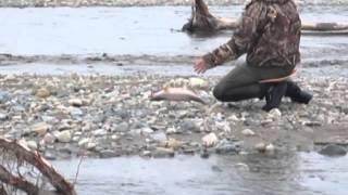 рыбалка в магадане 2015(, 2015-11-12T06:51:23.000Z)