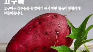 식이섬유 정보와 식품