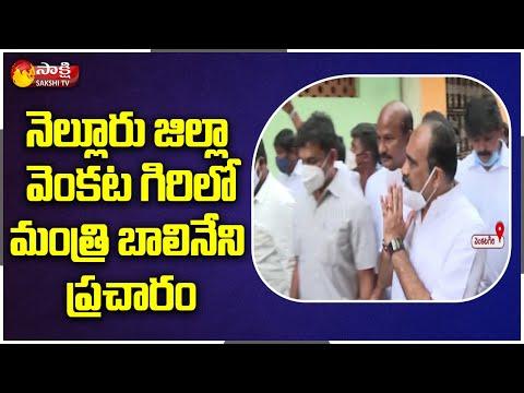 Minister Balineni Srinivasa Reddy Fires On Chandrababu | Tirupati By-Election Campaign | Sakshi TV