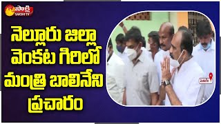 Minister Balineni Srinivasa Reddy Fires On Chandrababu | Tirupati By-Election Campaign | Sakshi TV
