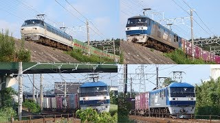2019/08/01 JR貨物 東海道本線 猛暑の中から貨物列車5本