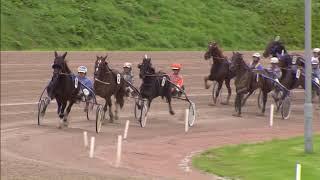 Vidéo de la course PMU PRIX DRACHTEN