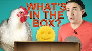 WHAT'S IN THE BOX CHALLENGE (feat. Aleks)