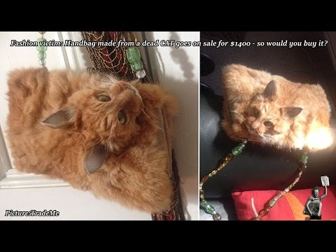Online outrage after dead cat handbag goes up for auction on Trade Me