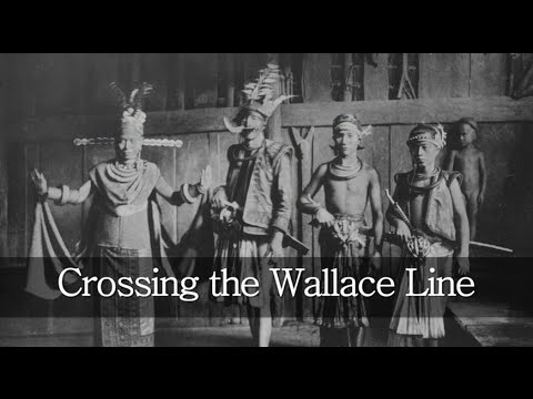 Crossing the Wallace Line - languages, genes and a forgotten history