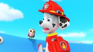 Paw Patrol Full Episodes   Paw Patrol Full Episodes English  Best Cartoon Movies For Kids # 12