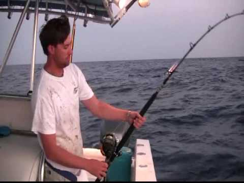 Tuna fishing charter fishing tuna charters grand isle for Fishing charters grand isle la