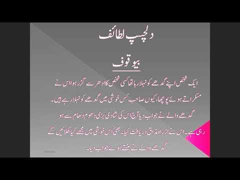 funny lataif/لطیفہ/لطیفے/لطائف اردو/اردو لطیفے