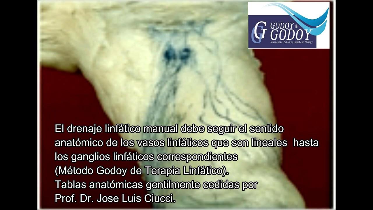 Método Godoy-Terapia linfático manual- Anatomia y fisiologia - YouTube