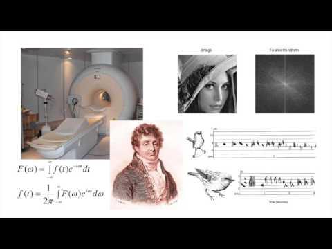 Birth of an Idea: A Mathematical Adventure - Cedric Villani