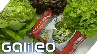 Wie frisch und gesund ist Fertig-Salat? | Galileo Lunch Break