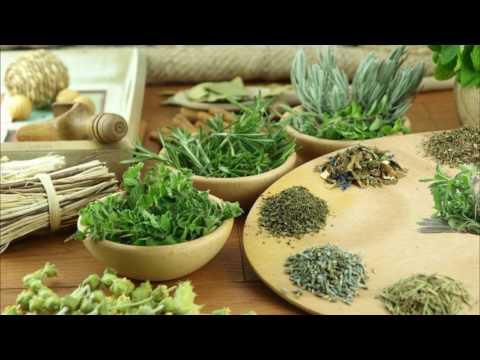Какие травы помогают при похудении?