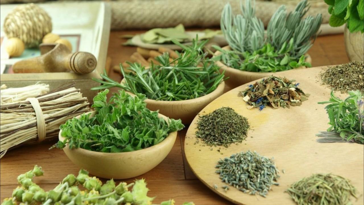 Тонизирующие средства: зеленый чай, гуарана, женьшень, кофеин .