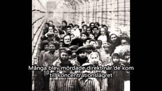 Andra världskriget och förintelsen