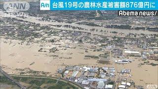 台風19号の農水被害額876億円 広範囲にダメージ(19/10/23)