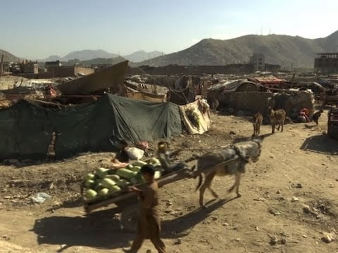Amnesty: 1.2M Displaced in Afghanistan by War
