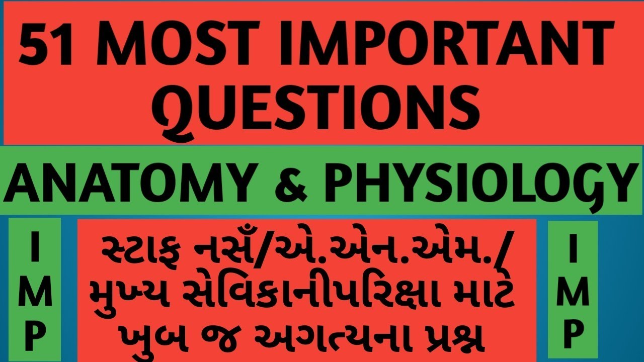 51 Most Important Question Of Anatomy And Physiology Youtube