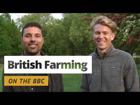 British Farming - On the BBC!