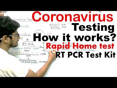 coronavirus-testing-in-india-|-coronavirus-test-at-home-and-rt-pcr-test-kit