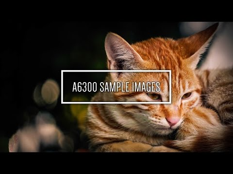 SONY Alpha A6300 Sample Images! Amazing Quality!