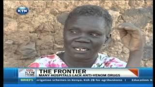 The Frontier : Snake Bite Healer